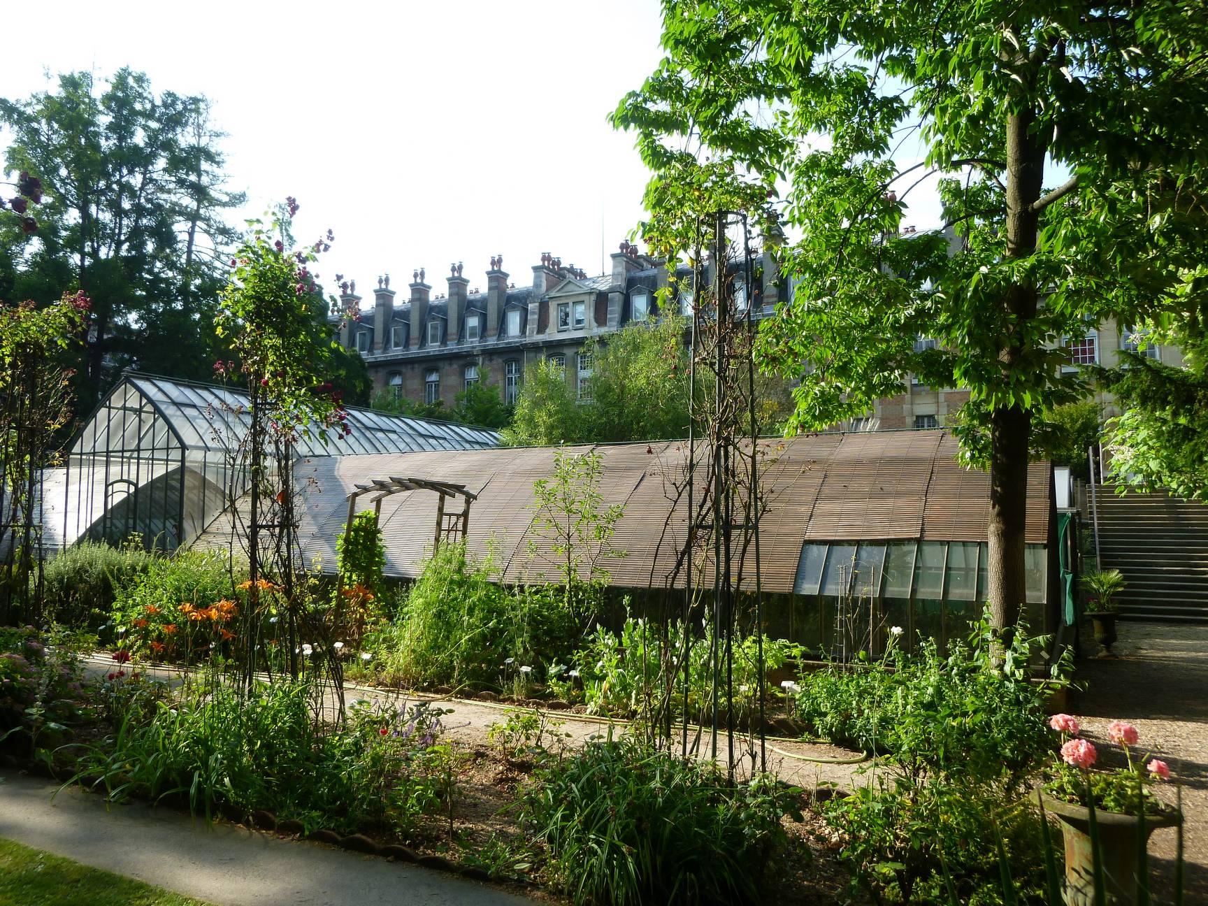 Des fleurs et des hommes le jardin botanique rouvre ses for Jardin botanique paris