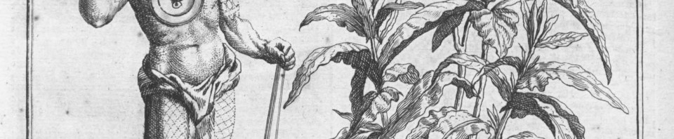 Guide de recherche sur les plantes de la science l for Recherche sur les plantes