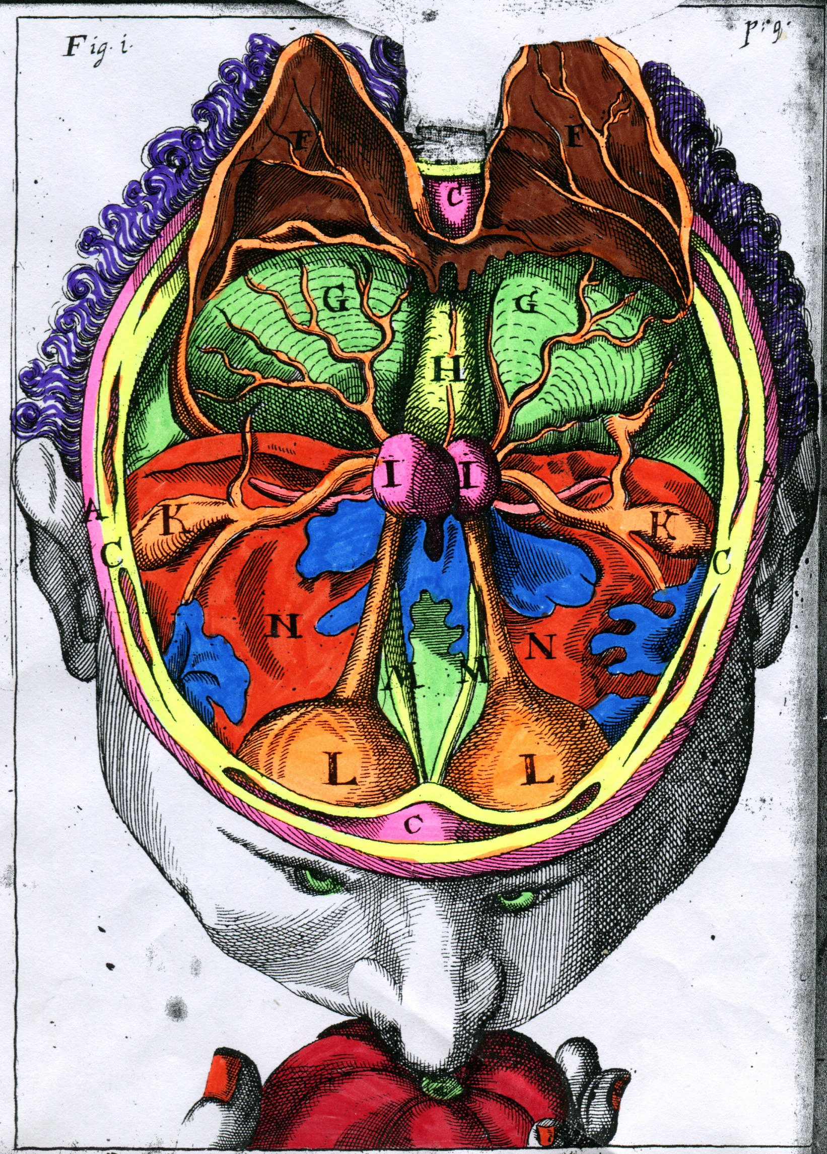 Coloriage La Ferme De Mathurin.Botanique Archives Le Blog Actualites De La Biu Sante