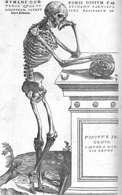 Gravure de De humani corporis fabrica libri septem, 1543.