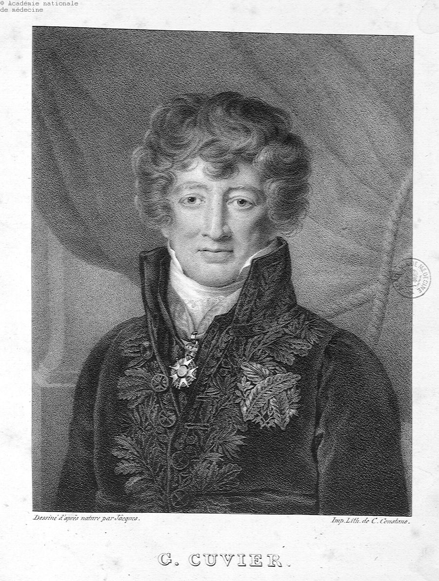 Cuvier, Georges (1769-1832) -  - anmpx13x0760