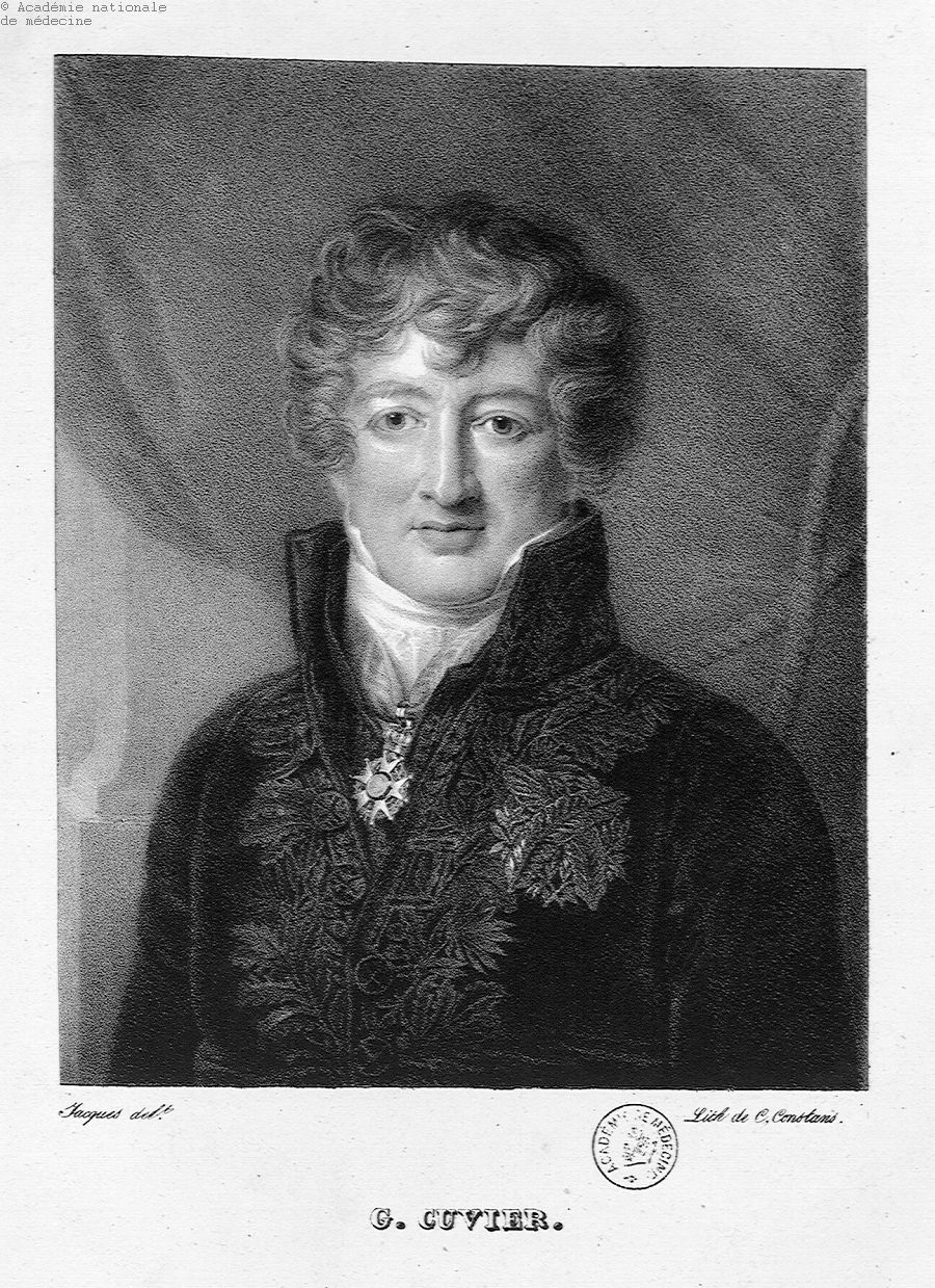 Cuvier, Georges (1769-1832) -  - anmpx13x0761