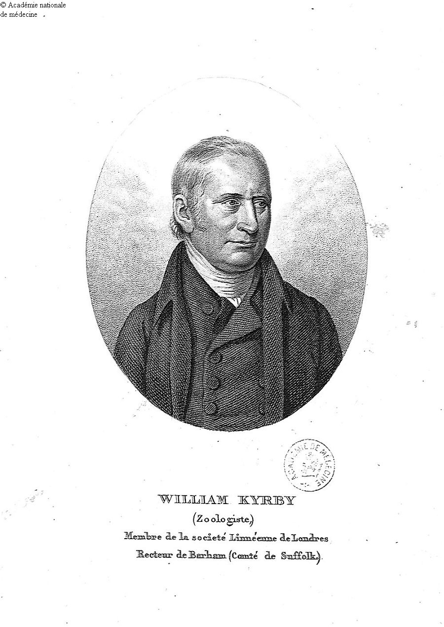 Kyrby, William (1759-1850) -  - anmpx19x1828