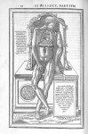 De dissectione partium corporis humani libri tres, à Carolo Stephano, doctore Medico, editi. Unà cum [...]