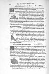 Musculi lumborum, à dorso ad nates - De dissectione partium corporis humani libri tres, à Carolo Ste [...]