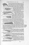 Musculi femorum aut crurum externi - De dissectione partium corporis humani libri tres, à Carolo Ste [...]