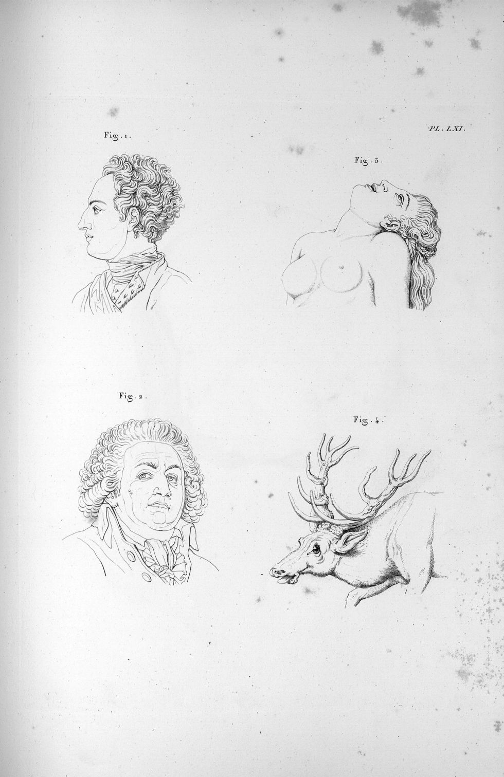 Pl. LXI. Fig. 1. Charles XII / Fig. 2. Mirabeau / Fig. 3 et 4. Mimique de l'amour physique - Anatomi [...] - Anatomie. Neurologie. Physiognomonie. 19e siècle (France) - med00575x03x0313