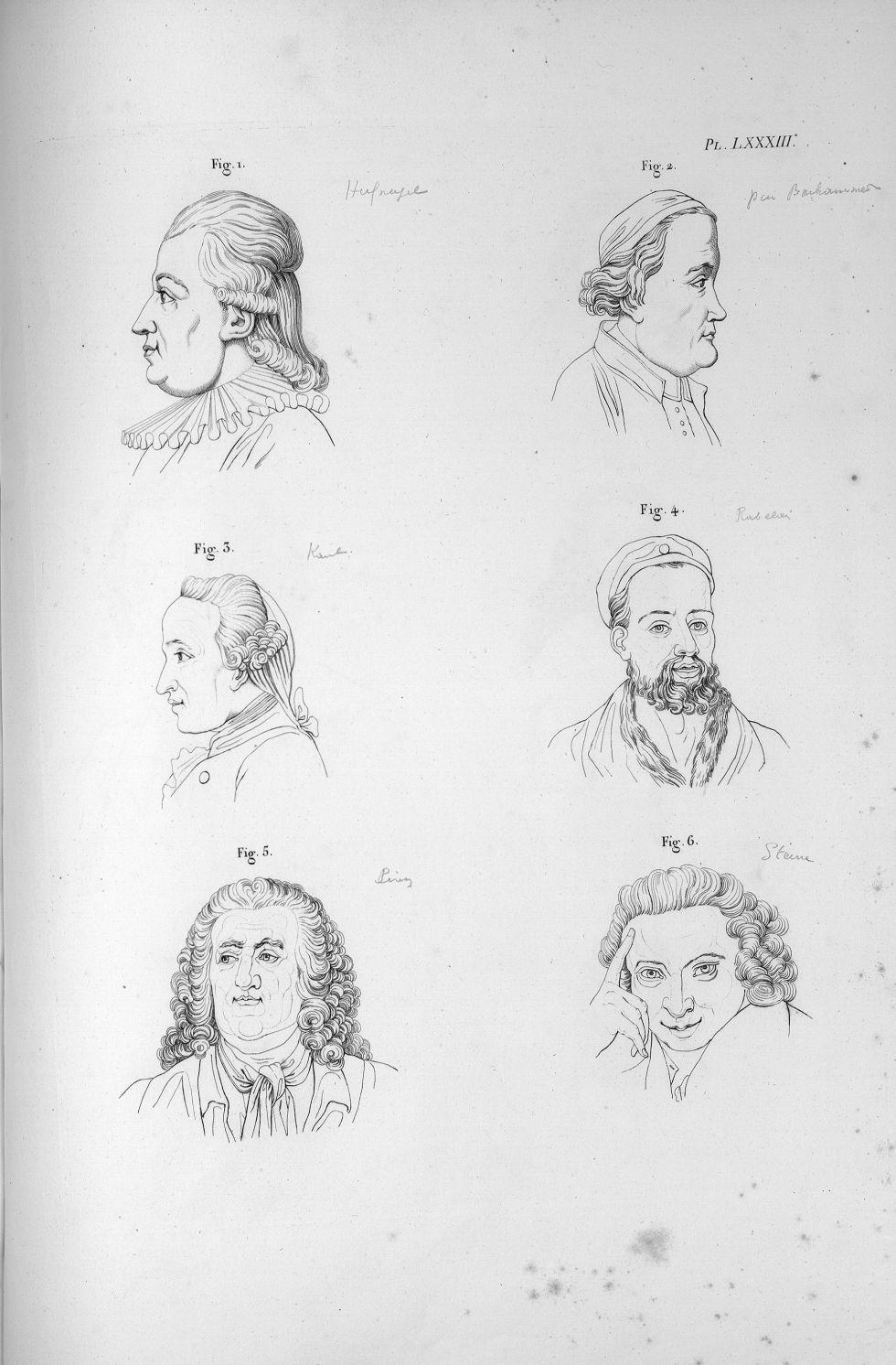 Pl. LXXXIII. Fig. 1. Hufnagel / Fig. 2. Baarhammer / Fig. 3. Kant / Fig. 4. Rabelais / Fig. 5. Piron [...] - Anatomie. Neurologie. Têtes. Phrénologie. 19e siècle (France) - med00575x04x0299