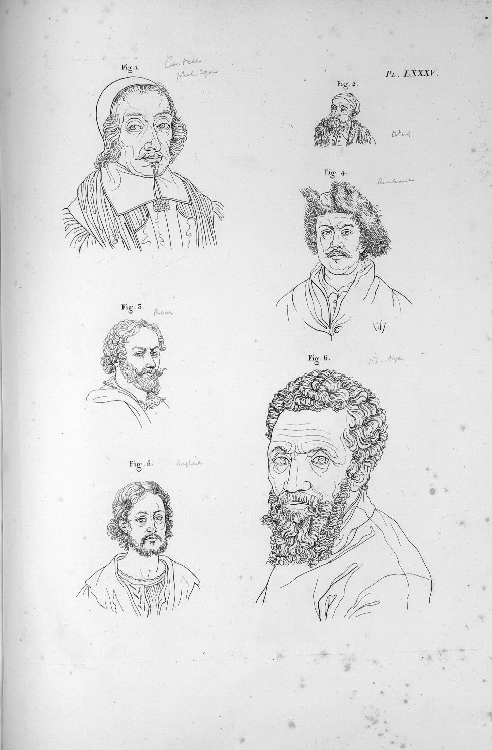 Pl. LXXXV. Fig. 1. Edmond Castellus / Fig. 2. Titien / Fig. 3. Rubens / Fig. 4. Rembrandt / Fig. 5.  [...] - Anatomie. Neurologie. Têtes. Phrénologie. 19e siècle (France) - med00575x04x0303