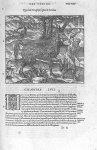 Pirassoipi, espece de licorne - Les Oeuvres d'Ambroise Paré,... divisées en vingt huict livres avec  [...]