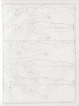 Planche 1 - Configuration et proportions des parties du corps de l'adulte - Traité complet de l'anat [...]