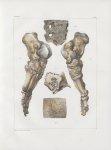 Planche 40 - Pied et détails d'os - Traité complet de l'anatomie de l'homme, par les Drs Bourgery et [...]