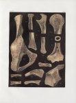Planche 42 - Détails de tissu d'os - Traité complet de l'anatomie de l'homme, par les Drs Bourgery e [...]