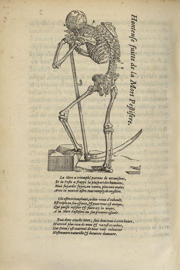 [Squelette avec une faux représentant] la Mort Pestifere - L'Oeconomie chirurgicale, pour le r'habil [...] -  - med05207x0711