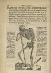 Premiere figure de l'osteologie, qui represente le Scelet de tout le corps humain - L'Oeconomie chir [...]