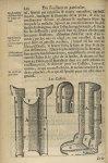 Les cassole - L'Oeconomie chirurgicale, pour le r'habillement des os du corps humain contenant l'ost [...]