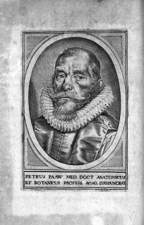 Petrus Paaw med doct anatomicus - Petri Paaw Amsteldamensis Succenturiatus Anatomicus. continens Com [...] -  - med05918x01x0002