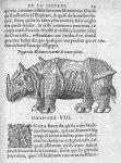 Rhinoceros armé de toutes pieces - Discours d'Ambroise Paré, conseiller premier chirurgien du roy, à [...]