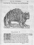 Taureau de la Floride - Discours d'Ambroise Paré, conseiller premier chirurgien du roy, à scavoir ,  [...]