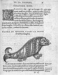 Poisson ayant la teste d'un Porc sanglier - Discours d'Ambroise Paré, conseiller premier chirurgien  [...]