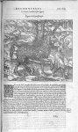 Fig. 332. Pyrassouppi - Les Oeuvres d'Ambroise Paré, conseiller et premier chirurgien du roy, divisé [...]