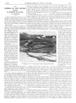 Coupe oblique de la squame-croûte dans la fausse teigne amiantacée d'Alibert-Devergie - La Presse mé [...]