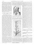 Fig. 1. Galien (d'après une gravure ancienne reproduite dans Les collestions artistiques de la Facul [...]
