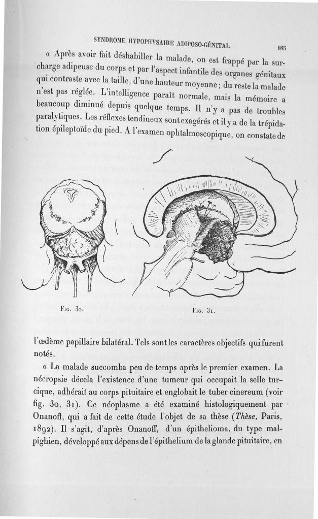 Fig. 30/ Fig. 31 - Exposé des travaux scientifiques -  - med110133x100x08x0187