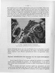 Fig. 100. Appendicite vermineuse à trichocéphales - Titres et travaux scientifiques