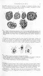 Fig. 1. Quatre cellules géantes globuleuses de la couche de Malpighi... Cellules petites / Fig. 2. T [...]