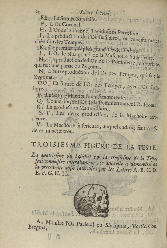 La quatriesme Figure du schellet, & la troisiesme de la teste - L'Oeconomie chirurgicale, pour le re [...] - Anatomie. Squelette (os). Crânes. 17e siècle - med5207Ax0412