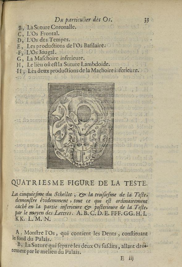 La cinquiesme du schellet, & la troisiesme de la teste - L'Oeconomie chirurgicale, pour le restablis [...] - Anatomie. Squelette (os). Crânes. 17e siècle - med5207Ax0413