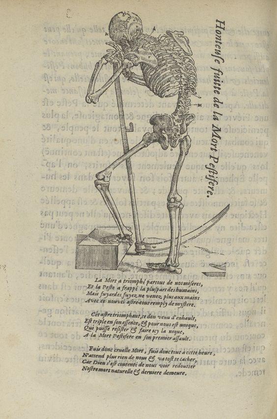 Honteuse fuitte de la mort pestifere - L'Oeconomie chirurgicale, pour le restablissement des parties [...] - Allégories. Maladies. 17e siècle - med5207Ax0865