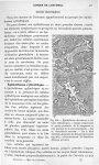Fig. 104. Epithélioma alvéolaire à cellules cylindriques. Coupe comprenant la partie profonde de la  [...]