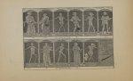 Côté gauche de la nef - La danse macabre de Kermaria-An-Isquit