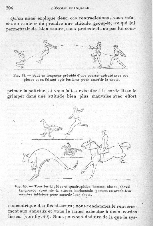 Fig. 39. Saut en longueur précédé d'une course exécuté avec souplesse et en faisant agir les bras po [...] -  - med65254x0204