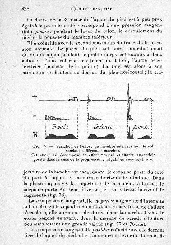 Fig. 77. Variation de l'effort du membre inférieur sur le sol pendant différentes marches. Cet effor [...] -  - med65254x0328