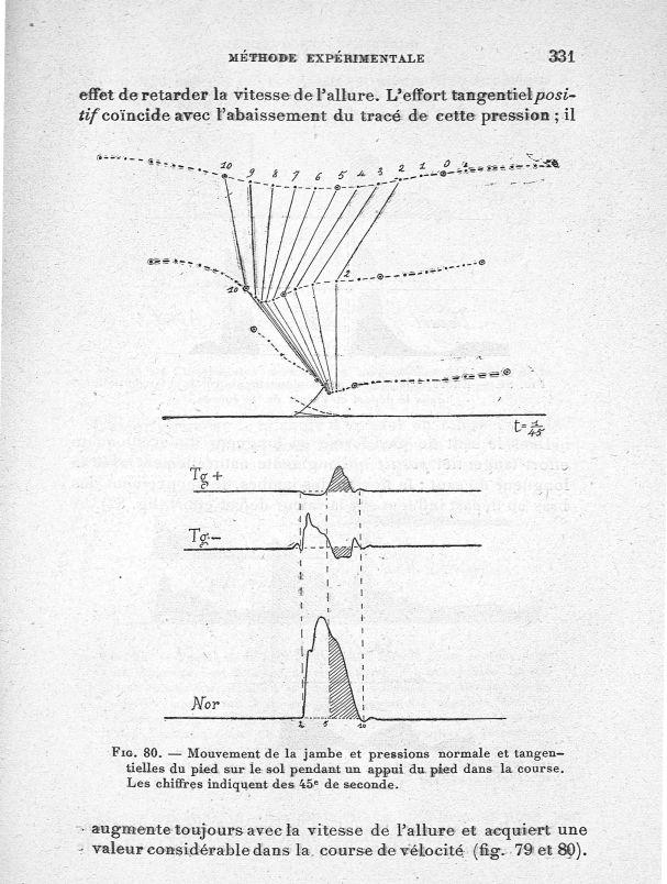 Fig. 80. Mouvement de la jambe et pressions normale et tangentielles du pied sur le sol pendant un a [...] -  - med65254x0331