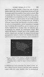 Fig. 3. — Cellules du corps muqueux de Malpighi recouvrant une papille du derme - Annales de dermato [...]