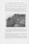 Fig. 4. — Microphotographie, à un fort grossissement du territoire délimité par le carré / Dans la F [...]