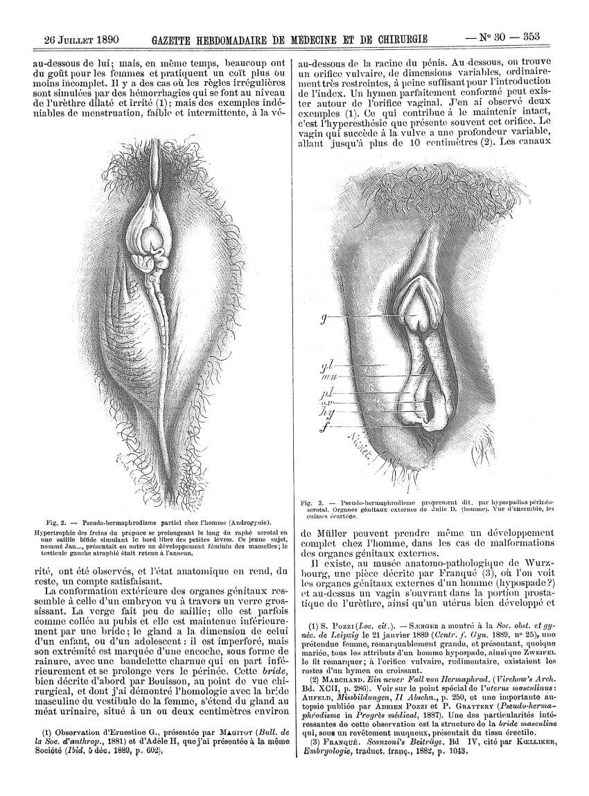 Hermaphrodisme