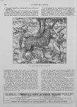 Figure du Pirassoipi, espèce de licorne d'Arabie. (A. Paré, oeuvres, édit. de 1582) - Le progrès méd [...]