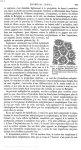 Fig. 6. Schéma de l'épithélium du type malpighien - Dictionnaire encyclopédique des sciences médical [...]