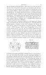 Fig. 20 : Lambeau d'épiderme pris sur la face supérieure d'une feuille de renoncule aquatique / Fig. [...]